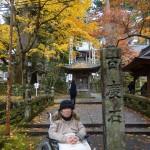 秋の暖かい日